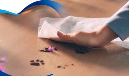 Utilizar toallas de papel en la cocina puede cambiarte la vida